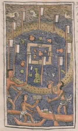 Códice Florentino 81